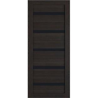 Дверь Лайт 5, черное стекло
