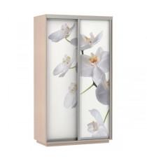 Шкаф-купе Экспресс Фото Дуо, Орхидея